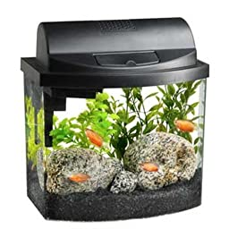 Aqueon 17771 Mini Bow 2.5 Gallon Desktop Aquarium Kit, Black