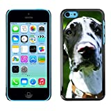 LASTONE PHONE CASE / Slim Protector Hard Shell Cover Case for Apple Iphone 5C / Great Dane Dalmatian Spots Dog