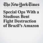 Special Ops With a Studious Bent Fight Destruction of Brazil's Amazon | Simon Romero