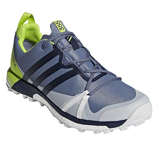 adidas outdoor Mens Terrex Agravic GTX Shoe