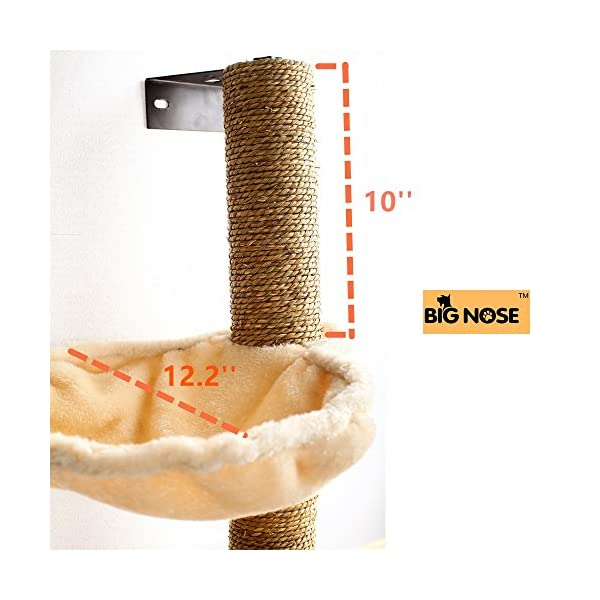 BIG NOSE- Wall Mounted Cat Scratching Post Multi Level Cat Shelves with Solid Wood Steps and Sunny Seat Hammock … 5