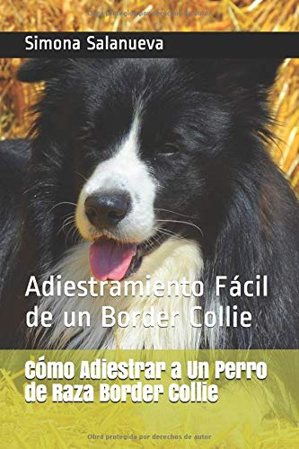 Cómo Adiestrar a Un Perro de Raza Border Collie: Adiestramiento Fácil de un Border Collie (Spanish Edition) 2