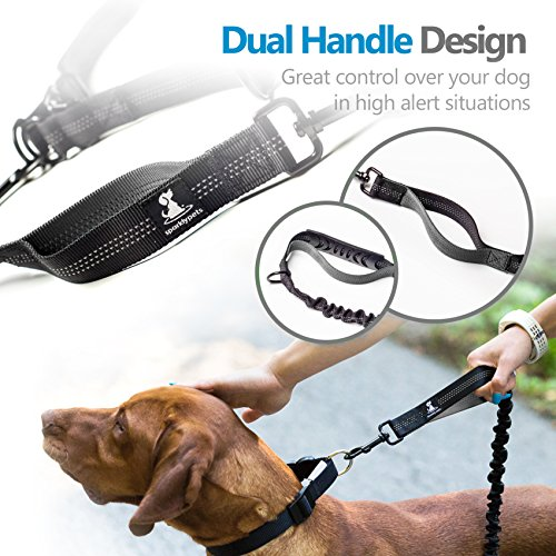 SparklyPets Hands-Free Dog Leash for Medium and Large Dogs - Professional Harness with Reflective Stitches for Training, Walking, Jogging and Running Your Pet (Grey)