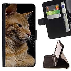 Momo Phone Case / Flip Funda de Cuero Case Cover - Gato Naranja Curl Americano de Pelo Corto Casa; - Samsung Galaxy S4 Mini i9190