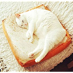 Gefry Creative Toast Bread Slice Style Pet Mats Cushion Soft Warm Mattress Bed For Cats & Dogs (Sponge Core) 111