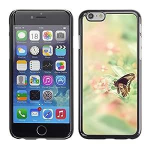 King Case - FOR Apple Iphone 6 Plus 5.5 - Butterfly Fly - Caja protectora de pl??stico duro Dise?¡Àado