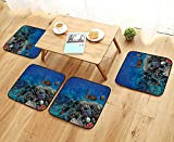 Printsonne Universal Chair Cushions Exotic Fish and Turtle in Fresh Water Sty Corals Bio Diversity Wild Life Personalized Durable W15.5 x L15.5/4PCS Set