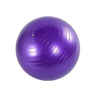 ELIA Pelota de Yoga 65Cm Pelota Deportiva Pelota de Fitness ...