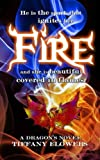img - for Fire (A Dragon's Fire) (Volume 1) book / textbook / text book