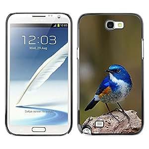 Planetar® ( Blue Songbird Blue Spring Green Nature ) SAMSUNG Galaxy Note 2 II / N7100 Fundas Cover Cubre Hard Case Cover