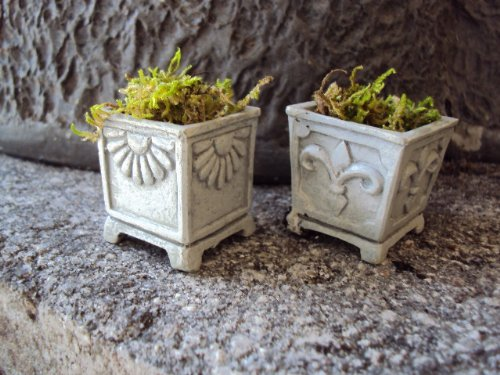 - Miniature Garden Set of 2 Faux Stone Planters c/w Preserved Moss