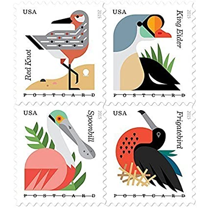 amazon com coastal birds roll of 100 postcard rate stamps by usps