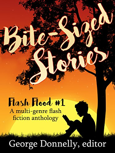 Bite-Sized Stories: A Multi-Genre Flash Fiction Anthology (Flash Flood Book 1)