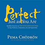 Perfect Just as You Are: Buddhist Practices on the Four Limitless Ones: Loving-Kindness, Compassion, Joy, and Equanimity | Pema Chödrön