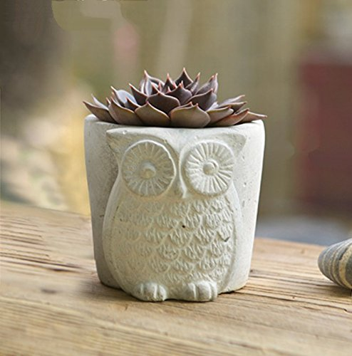 Wreath Sun Seed - SUN-E Handmade White Unglazed Cement Owl Succulent Planter/Mini Bud Flower & Herb Pot