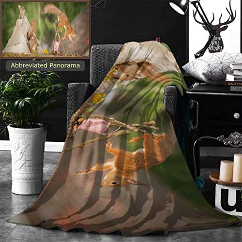 Unique Custom Double Sides Print Flannel Blankets Young Red Squirrel In A Tee Pee With A Fire Place With Older Squirrel Jumping Of W Super Soft Blanketry for Bed Couch, Throw Blanket 60 x 50 Inches by Ralahome