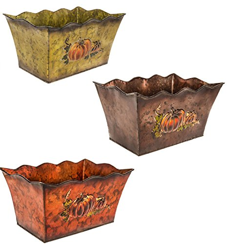 (Vintage Fall Scalloped Metal Containers with Pumpkins (Farmhouse Ranch Home Decor) Flower Pots Table Centerpiece Storage Containers Thanksgiving)