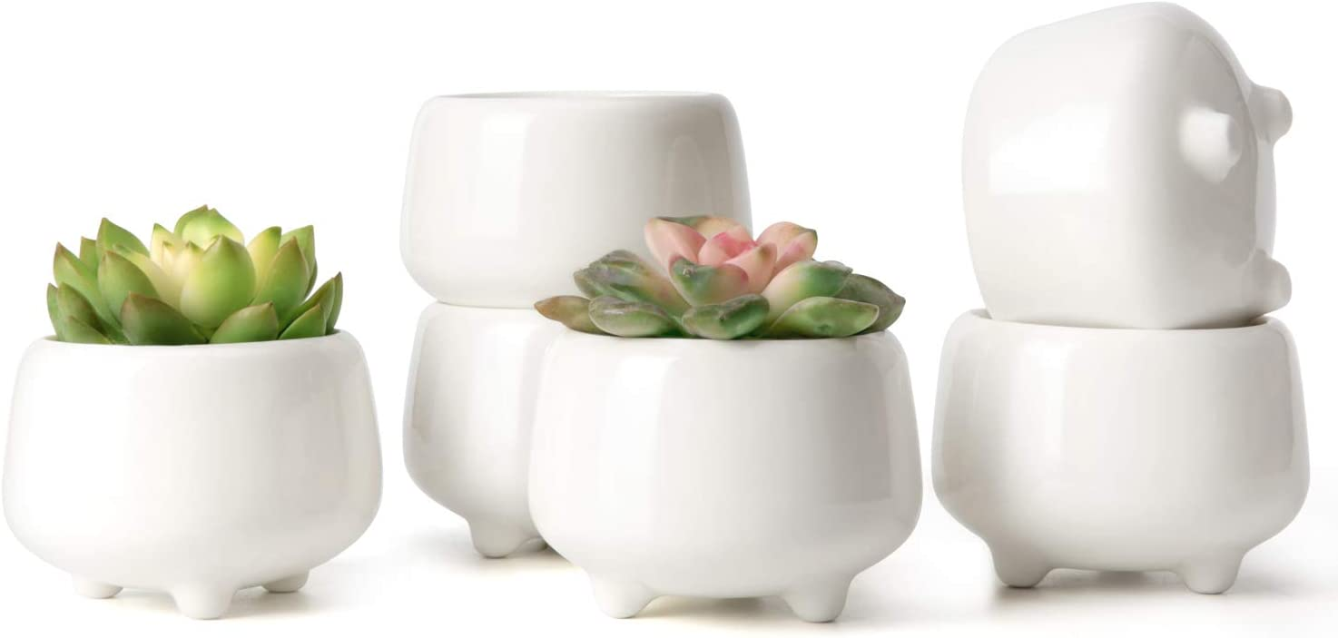 Mkono 3.35 Inch White Ceramic Succulent Pots Cute Cactus Planter with Legs Small Flower Plant Containers Home Decor for Indoor Use Gift Idea, Set of 6