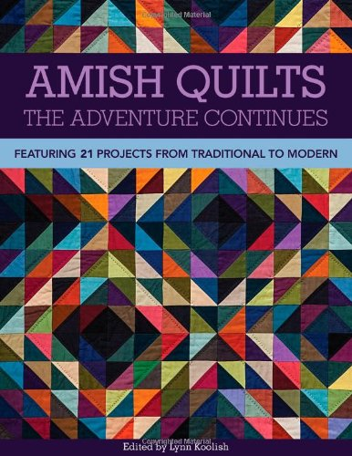 Amish Quilts_The Adventure Continues: Featuring 21 Projects from Traditional to Modern (Twenty Little Amish Quilts compare prices)