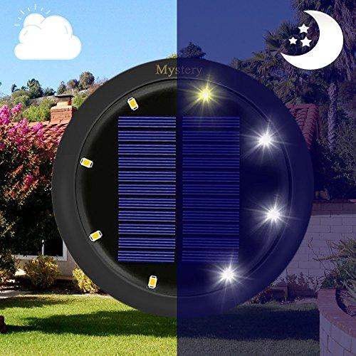Ground Level Solar Lights
