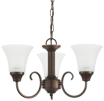 Amazon.com: Sea Gull Lighting Holman – Lámpara de techo (3 ...