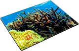MSD Place Mat Non-Slip Natural Rubber Desk Pads design 29844479 Colorful corals in the underwater landscape on Bali Indonesia