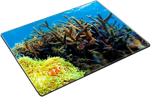 MSD Place Mat Non-Slip Natural Rubber Desk Pads design 29844479 Colorful corals in the underwater landscape on Bali Indonesia by MSD