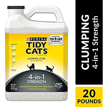 Purina Tidy Cats Clumping Cat Litter, 4-in-1 Strength Multi Cat Litter - (2) 20 lb. Jugs