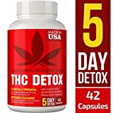 THC Detox Made in USA - BIO-Cleanse - Liver Detox, Urinary Tract & Kidney Cleanse - 5 Day Detox - Broad-Spectrum Toxin Cleanse - Natural THC Remover - Milk Thistle, Cranberry - Vegetarian Capsules