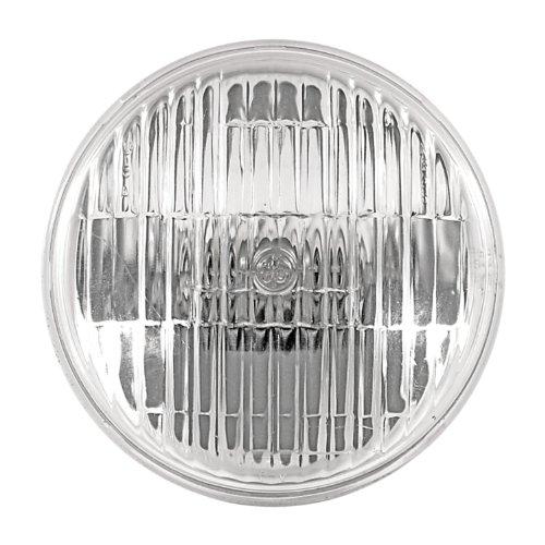 (GE Lighting 71779 Halogen Landscape Lighting PAR36 Light Bulb with Screw Terminal Base, 1-Pack)