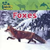 img - for Foxes (Amazing Animals (Gareth Stevens Paperback)) book / textbook / text book