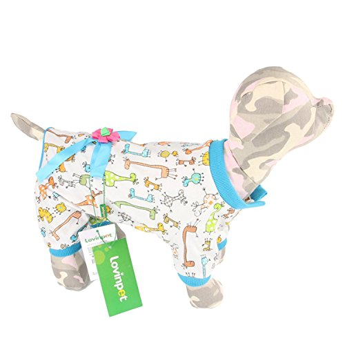 yorkie dog clothes - 2