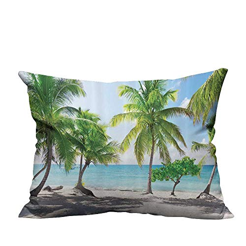 Catalina Spa Pillow - YouXianHome Sofa Waist Cushion Cover Palm Tree Leaves and Catalina Island Seashore Coastal Panoramic Decorative for Kids Adults(Double-Sided Printing) 12x16 inch