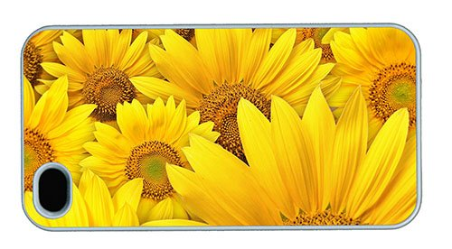 Hipster IPhone 4 Fun Cases Sunflowers Background PC White For Apple 4S