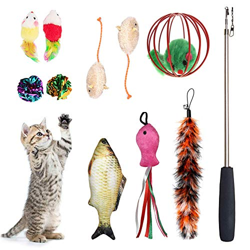 laamei Cat Toys Set 11 Pcs, Cat Retractable Teaser Wand, Catnip Fish, Interactive Cat Feather Toy, Mylar Crincle Balls, Two Cotton Mice, Fluffy Mouse Ball for Cat&Kitty ()