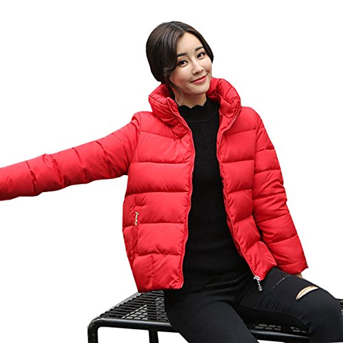Down Warmth F Collar Thickened nihiug Collar Jacket Section Eiderdown Down Outwear Size Long cultivation Winter Fur Jacket Self Padded Coat Large EEq7RzwxU