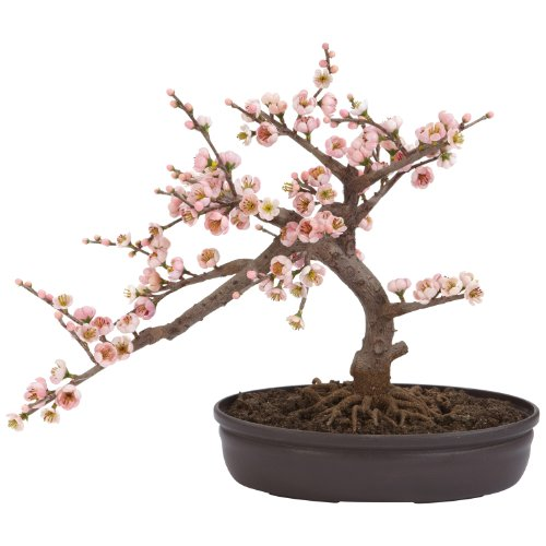 Peace Top Silk Inspired (Nearly Natural 4764 Cherry Blossom Bonsai Artificial Tree, Pink)