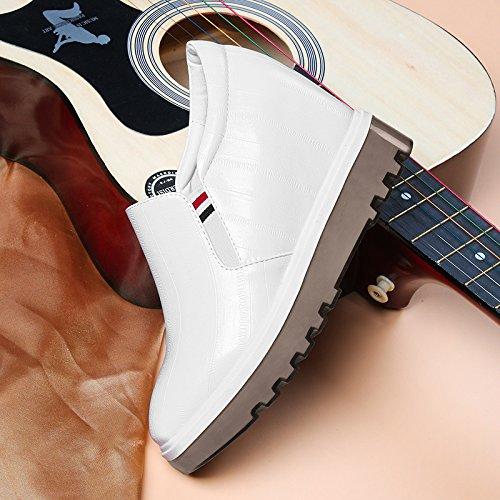 Aumento Zapatos Zapatos Coinciden Zapatos Estudiantes Primavera Deportivos KPHY De Coreano Marea Mujeres Todos Zapatos white El Blancos wqvvg5U