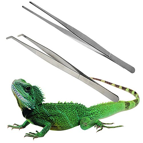 zswellgo Stainless Steel Tweezers - 11.8 inches, Safe and Durable to Hold Worms, Crickets and Bugs, Great for Reptiles, Iguanas, Bearded Dragons, Lizards, Geckos (Straight ()