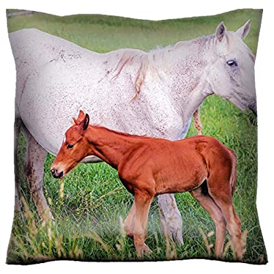 Handmade 16x16 Throw Pillow case Polyester Satin Pillowcase Decorative Soft Pillow Covers Protector Sofa Bed Couch Image ID: 35134106 Mother Horse with her colt on a Farm in Central Kentucky