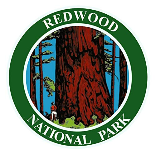 Explore Redwood National Park - 3