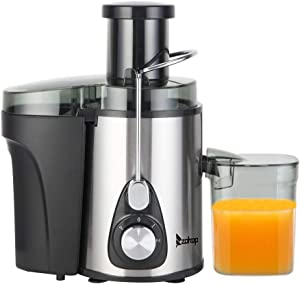 110V 600W 2 High Speed Stainless Steel Electric Juicer Machine with 600ML Juice Cup, 1000ML Slag Cup, 75MM Large Caliber, Double Gear for Fruits and Vegetables