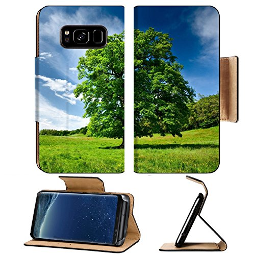 Liili Premium Samsung Galaxy S8 Plus Flip Pu Leather Wallet Case Single big oak tree in a meadow near the forest Photo 7056741 Simple Snap Carrying ()