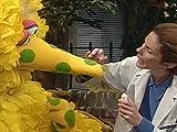 Big Bird Has Birdy Pox