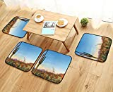 Leighhome Simple Modern Chair Cushions Decor Sun Goes Down in Desert Prickly pear Cactus Southwest Texas National Park Reusable Water wash W27.5 x L27.5/4PCS Set