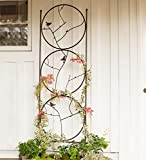 Plow & Hearth 53886 Circle of Birds Trio Garden Trellis