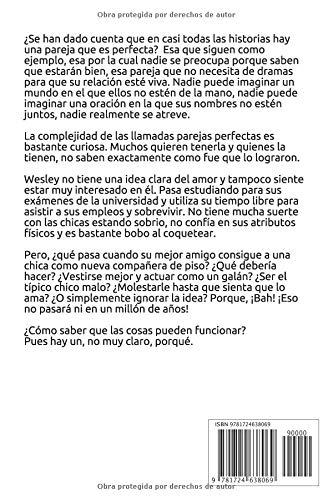 Un, no muy claro, porqué (Un cierto romance) (Volume 1) (Spanish Edition): Jude Bryndís: 9781724638069: Amazon.com: Books