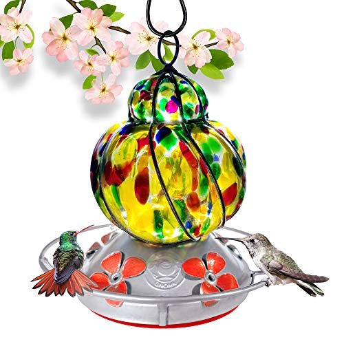 - Grateful Gnome - Hummingbird Feeder - Hand Blown Glass - Caged Wild Flower - 16 Fluid Ounces