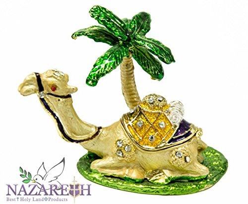 Israel Camel - 7