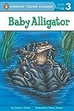 Baby Alligator, Ginjer Clarke, 0448420953